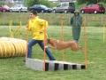 mavinga on agility - may 2007