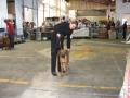 puppy class - annakiya