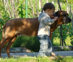 max(1,3 years old) & tavi(ella's brother) on may 2010.