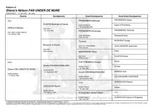 pedigree of Shana's Nelson Fan Under De Mune